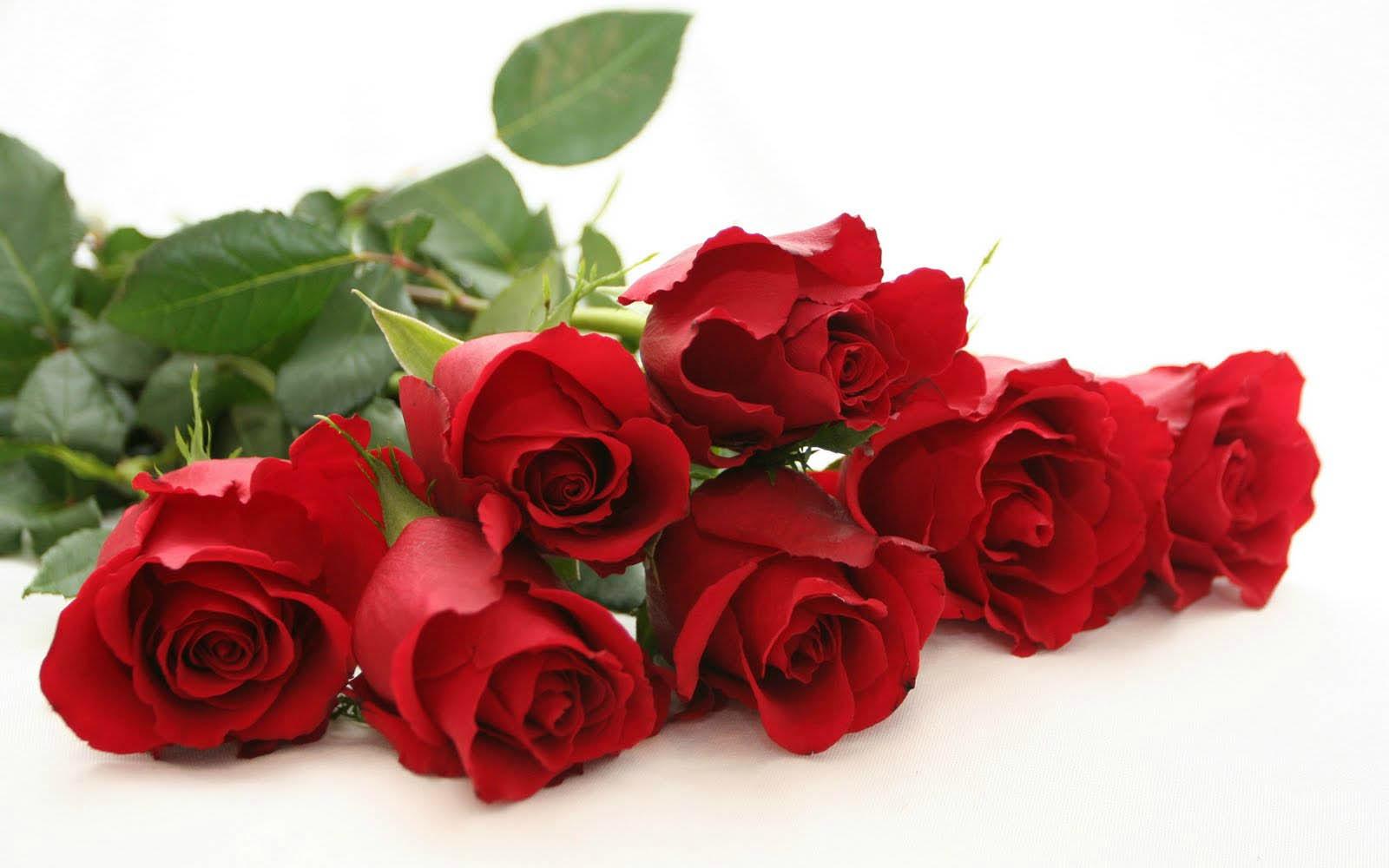 Valentine S Day Valentine S Day 3